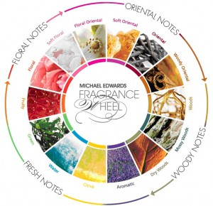 Het GeurWiel Fragrance Wheel Michael Edwards